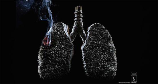 fumo 5
